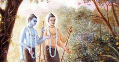 నరనారాయణావతారము